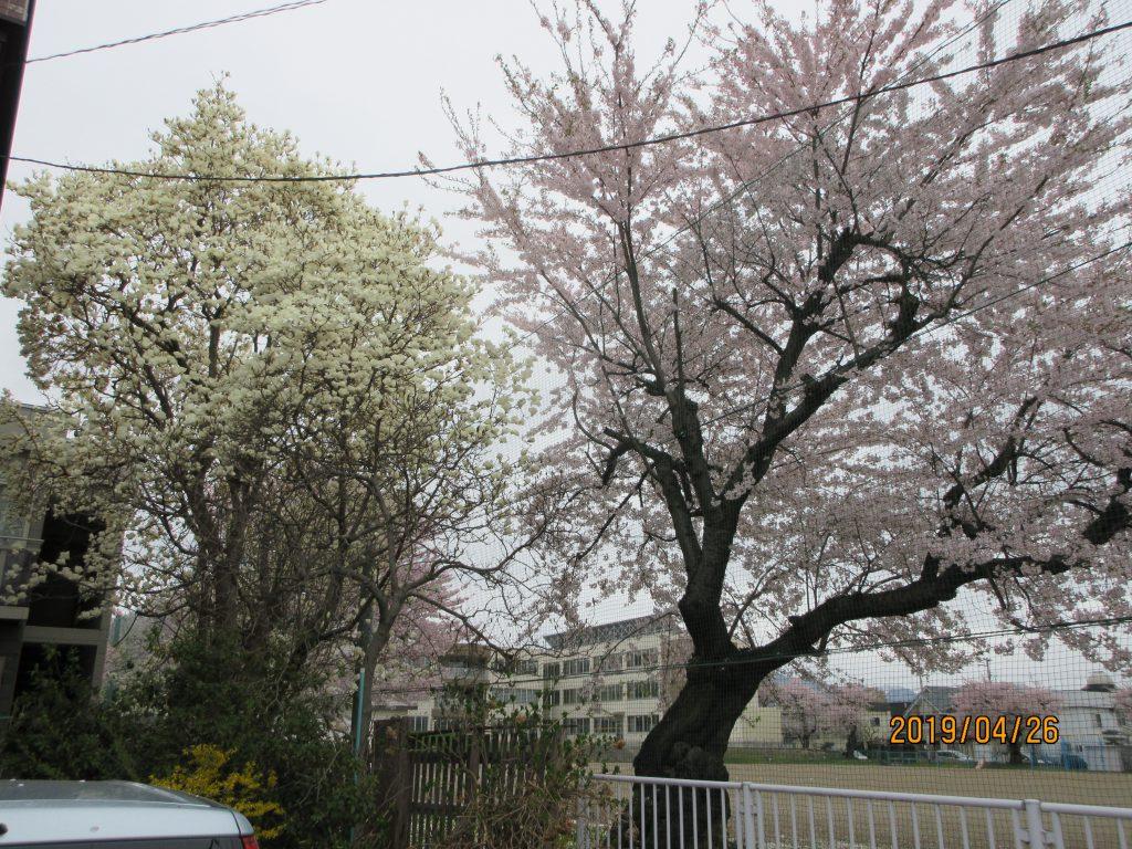 弘前 不動産 グリーン住宅24