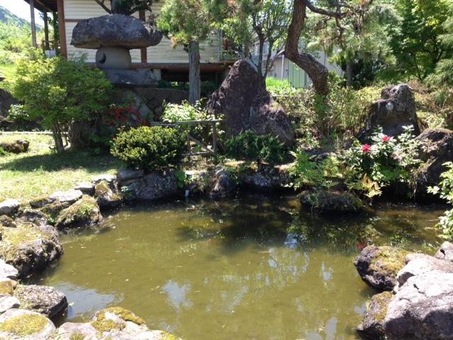 庭の池(外観)